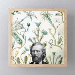 Ode to Haeckel Framed Mini Art Print