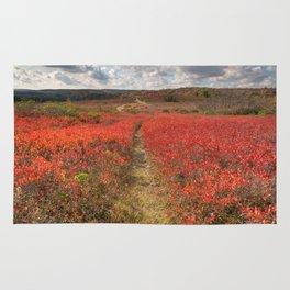 Autumn Huckleberry Trail Rug