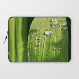 Raindrops on a green leaf Laptop Sleeve