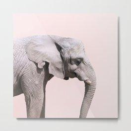 Elephant Pink Sunset Metal Print