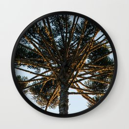 Araucaria branches II Wall Clock