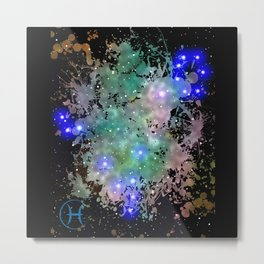 The Zodiac Sign -- Pisces Metal Print