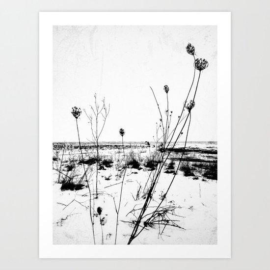   the desolation flowers   Art Print