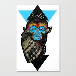 Color me Monkey Canvas Print