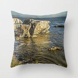 Shell Beach II Throw Pillow