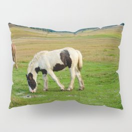 Gypsy Vanner Filly 5506 - Colorado Pillow Sham