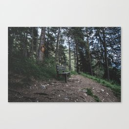 Resting bench on hiking trail in the Alps Canvas Print