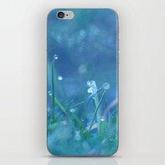 Drops of Winter iPhone & iPod Skin
