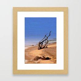 Driftwood on the Beach of Lake Superior Framed Art Print