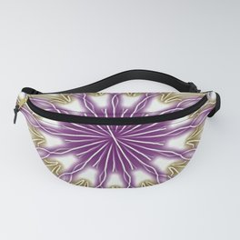String Theory Fanny Pack