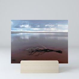 Lake Tyrrell and that Branch Mini Art Print