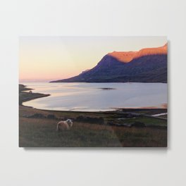 Seydisfjordur Sheep Metal Print