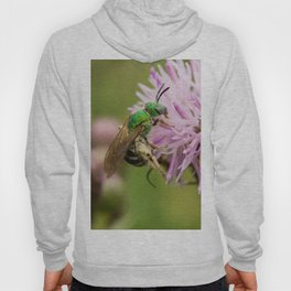 Green Bee on a Thistle Hoody