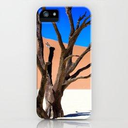Deadvlei iPhone Case