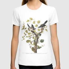 Loggerhead shrike, Birds of America, Audubon Plate 57 T-shirt