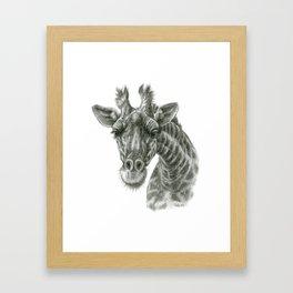 The giraffe G2012-049 Framed Art Print