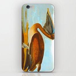 Brown Pelican Illustration iPhone Skin