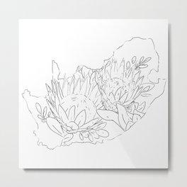 Suid Afrika Proteas Metal Print
