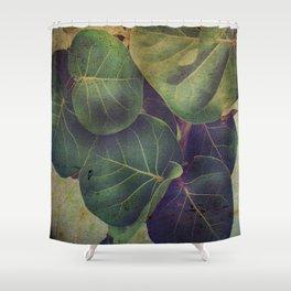 Sea Grape Shower Curtain