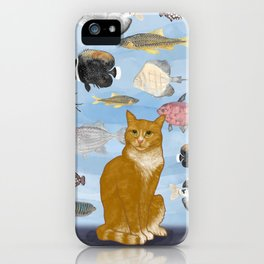 Kitty Dreams - Gwenny Watching the Fish Tank iPhone Case