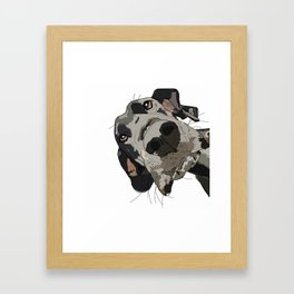 Great Dane Framed Art Print