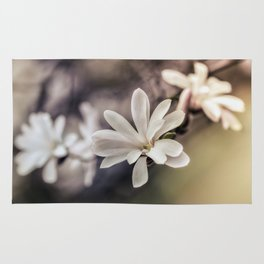 White Magnolias Rug