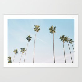 Beach Palms Art Print