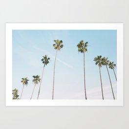 Beach Palms Art Print