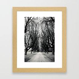 East Park HULL Framed Art Print