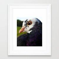 pigeon Framed Art Prints featuring Pigeon by Angelandspot