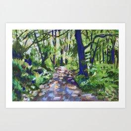 Dappled Path at Dun na Ri Art Print