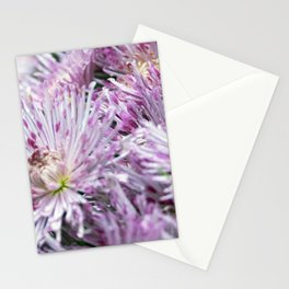 Longwood Gardens Autumn Series 155 Stationery Cards
