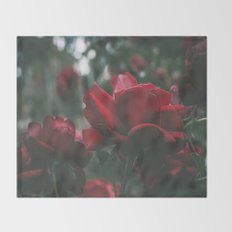 Roses III Throw Blanket