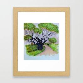 Tree Study 3 Framed Art Print