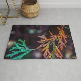 Changing Colors Rug