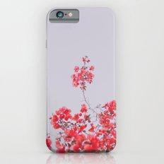 Sweet Pink  Slim Case iPhone 6s