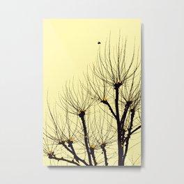 filigrane Trees Metal Print