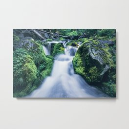 Forest Flow Metal Print