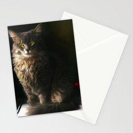 Teacher's Pet Stationery Cards