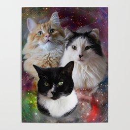 Space Fluffs Poster