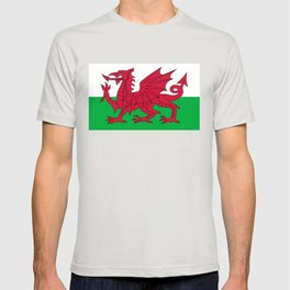 National flag of Wales - Authentic version T-shirt