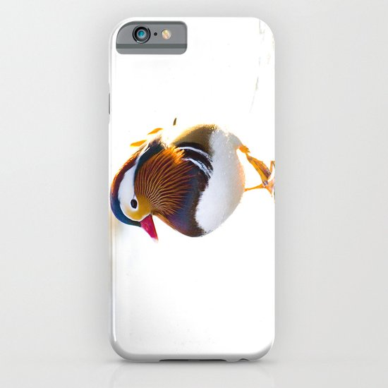 Mandarin Duck iPhone & iPod Case