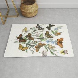 Vintage Butterflies And Caterpillars Illustration Rug