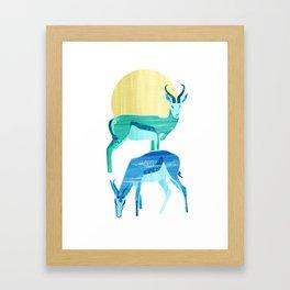 Antilopes in the sun Framed Art Print