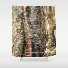 If I Could Read Tree Shower Curtain