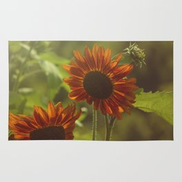 Red Sunflower II Rug