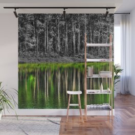 Forest reflection Wall Mural