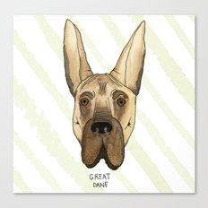Great Dane Canvas Print