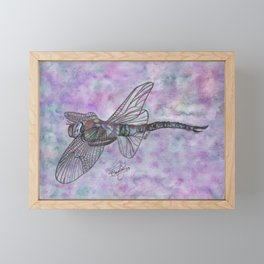 Dragonfly Framed Mini Art Print