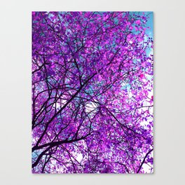 purple tree III Canvas Print